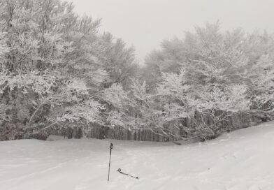 17 gennaio 2021 Alburni neve